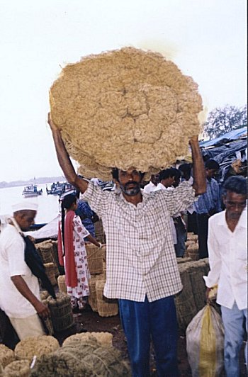 The Weekly Coir Market