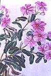 Flowers of Mysore � water color painting by Mukta Venkatesh