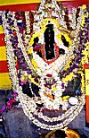 An Idol of Ganesh Overwhelmingly Decoarated With Flowers on His Birthday