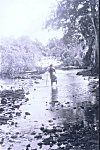 Jyotsna Crossing Amdayi River