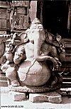 Elephant Head, Elephant Belly