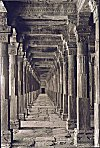 Pillars Singing Rupamati